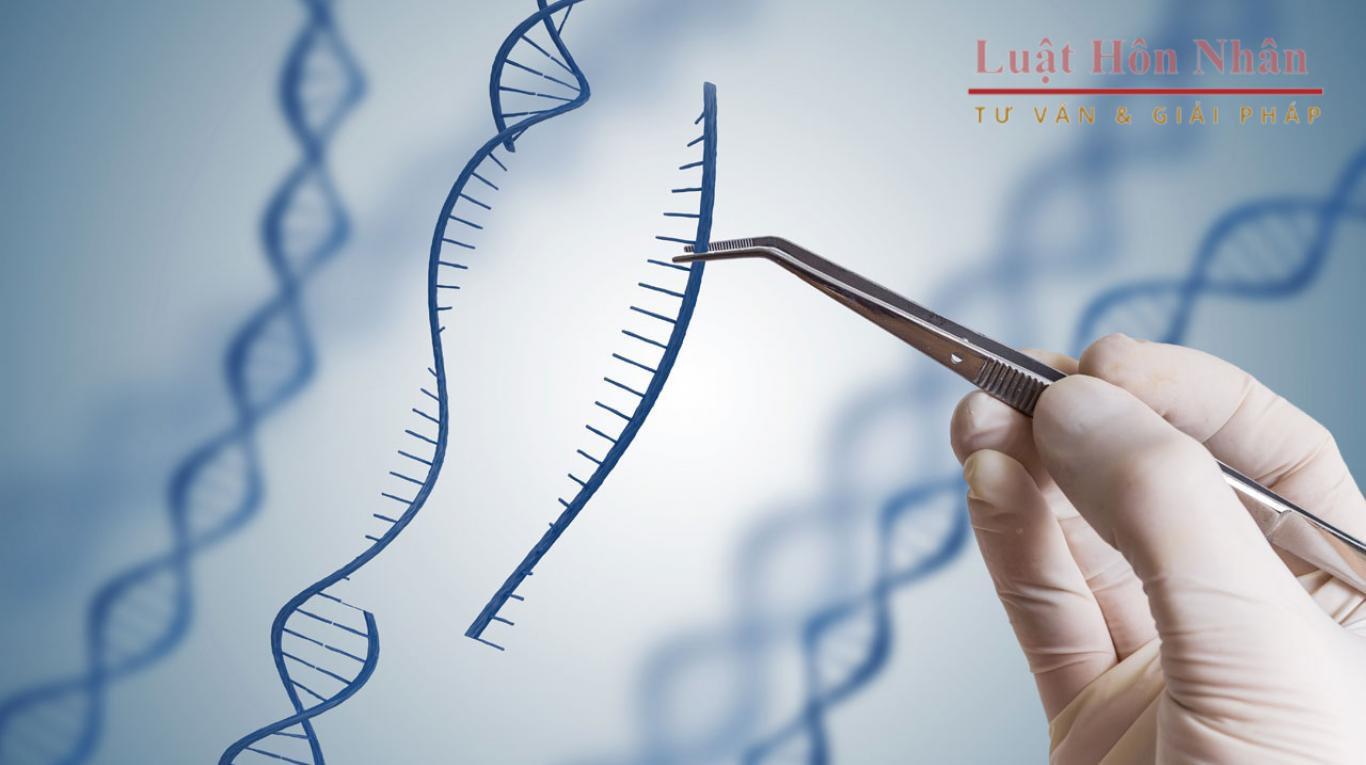 Xét nghiệm ADN, căn cứ hữu hiệu để xác định quan hệ huyết thống